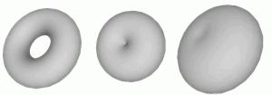 Sketchup Torus 03